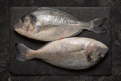 Ny fisk för dorado två på svart granitstenbräde arkivfoto