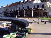 Ny fisk från Adriatiskt havet, Cavtat, Kroatien royaltyfri foto