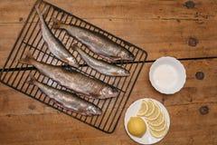 Ny fisk, innan att laga mat på gallret Royaltyfri Fotografi