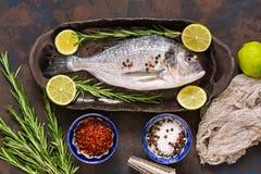 Ny fisk med kryddor på en mörk bakgrund, bästa sikt Rå doradofisk på en keramisk maträtt med limefrukt och rosmarin royaltyfri fotografi