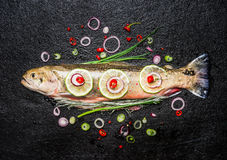 Ny fisk med läcker huggen av smaktillsats som är klar för smaklig matlagning på mörk bakgrund, bästa sikt Arkivbilder