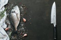 Ny fisk med salt, peppar, aromatiska örter och grönsaker över tappningmörkerbakgrund Arkivbilder