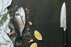 Ny fisk med salt, peppar, aromatiska örter och grönsaker över tappningmörkerbakgrund Royaltyfri Foto