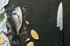 Ny fisk med salt, peppar, aromatiska örter och grönsaker över tappningmörkerbakgrund Royaltyfri Fotografi