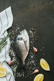 Ny fisk med salt, peppar, aromatiska örter och grönsaker över tappningmörkerbakgrund Fotografering för Bildbyråer