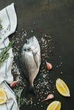 Ny fisk med salt, peppar, aromatiska örter och grönsaker över tappningmörkerbakgrund Royaltyfria Bilder