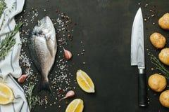 Ny fisk med salt, peppar, aromatiska örter och grönsaker över tappningmörkerbakgrund Arkivbild