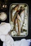 Ny fisk med teriyaki och rosmarin Arkivbilder