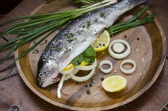 Ny fisk och enkla ingredienser fotografering för bildbyråer