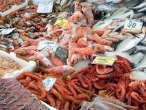 Ny fisk på fiskmarknaden Fotografering för Bildbyråer
