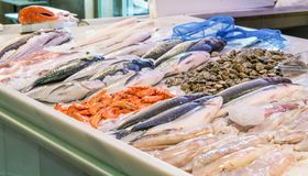 Ny fisk som visas på stallen på lokal marknad av San Agustin arkivfoto