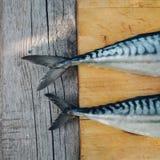 ny fisk två på en skärbräda som tätt lagar mat makrillen, fisksvansar upp royaltyfri bild