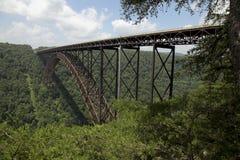 ny flod för bro royaltyfri foto
