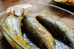 Ny forellfisk med kryddor som är klara för grillfest Royaltyfria Bilder