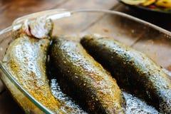 Ny forellfisk med kryddor som är klara för grillfest Fotografering för Bildbyråer