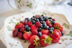 Ny frukt Arkivfoton