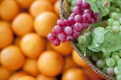 Ny frukt, druvor Royaltyfri Fotografi