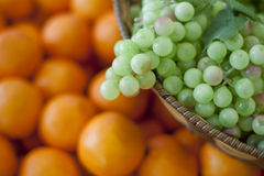 Ny frukt, druvor Arkivbilder