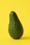 ny frukt för avokado Royaltyfri Fotografi