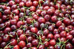 ny frukt för Cherry arkivbild