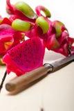 ny frukt för drake Royaltyfri Bild