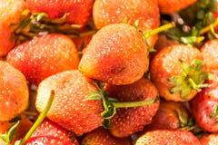 Ny frukt för jordgubbe, zoommacroshot royaltyfri foto