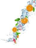 Ny frukt i vattenfärgstänk över vit Royaltyfria Foton