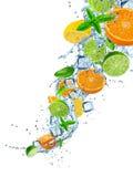 Ny frukt i vattenfärgstänk över vit Royaltyfri Foto