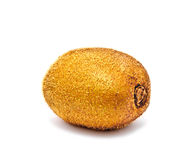 ny frukt isolerad kiwi Royaltyfria Foton