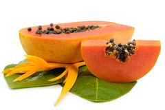ny frukt isolerad tropisk white för papaya Arkivbild