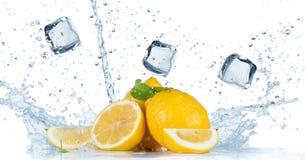 Ny frukt med vattenfärgstänk royaltyfria bilder