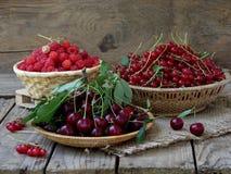 Ny frukt och bär i korgar på träbakgrund royaltyfri fotografi