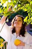 ny fruktflicka som väljer upp royaltyfri fotografi