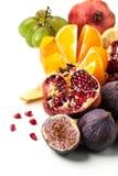 ny fruktgrupp Royaltyfri Foto