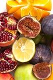 ny fruktgrupp Royaltyfria Foton