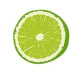 ny fruktlimefrukt Royaltyfria Bilder