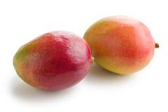 ny fruktmango Royaltyfria Foton