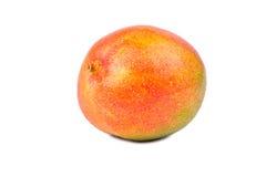 ny fruktmango Fotografering för Bildbyråer