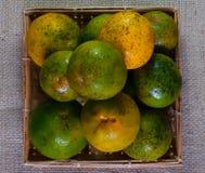 ny fruktorange Arkivfoton