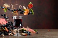 Ny fruktsaft av den mogna svarta chokeberryen i exponeringsglas och bär med l royaltyfria bilder