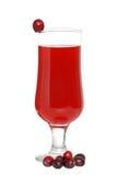ny fruktsaft för cranberriescranberry arkivbild