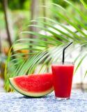 Ny fruktsaft för vattenmelon, smoothie på tropisk utomhus- bakgrund med palmblad kopiera avst?nd fotografering för bildbyråer