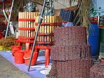 Ny fruktsaft för röd druva från pressen Fotografering för Bildbyråer