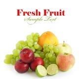 ny fruktsommar royaltyfria foton