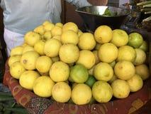 ny fruktvariation Royaltyfri Foto