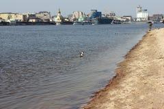 ny gammal flod för stad Arkivbild