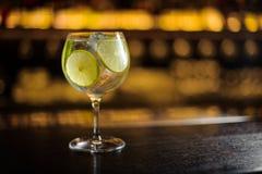 Ny Gin Tonic coctail som dekoreras med limefruktskivor fotografering för bildbyråer