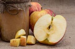 Ny gjord applesauce royaltyfri foto