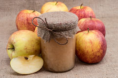 Ny gjord applesauce med äpplen royaltyfria bilder