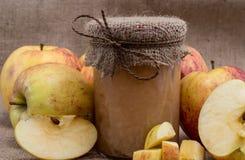 Ny gjord applesauce med äpplen fotografering för bildbyråer